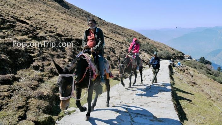 Trekking route to Tungnath
